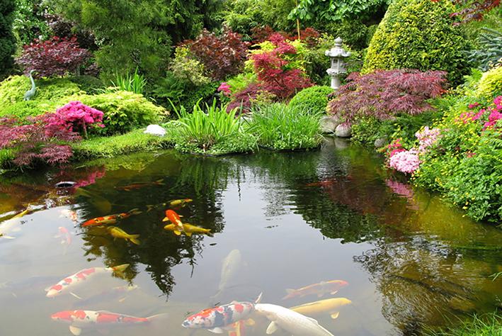 Japanese Garden 2sm
